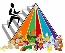 The 2005 USDA food pyramid