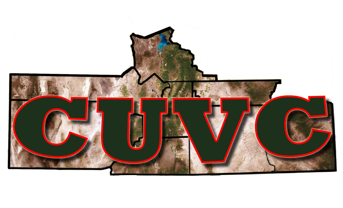 Central Utah Veterans Council logo